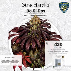 insta-post-stracciatella (002)